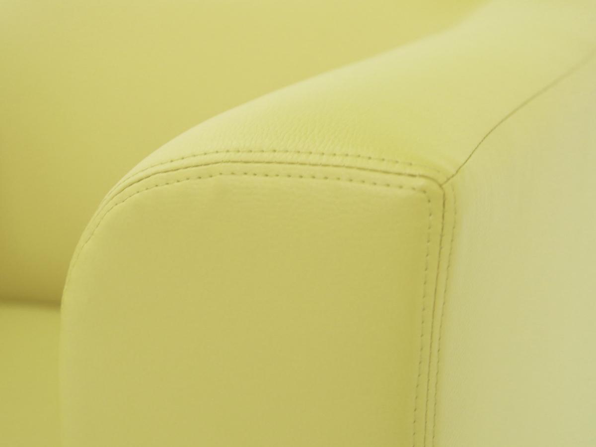 chicago 2er sofa ledersofa gr n. Black Bedroom Furniture Sets. Home Design Ideas